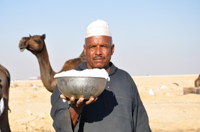 drinking-camel-milk
