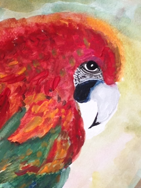 Parrot Symbolism In Art Justbluedutch