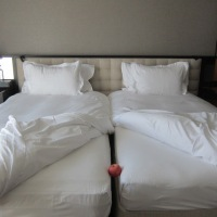 Two Duvets are better than One :  Sleeping the German way